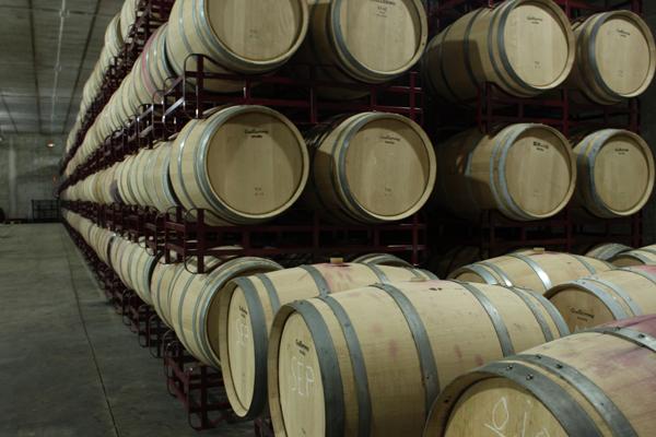 la crianza del vino